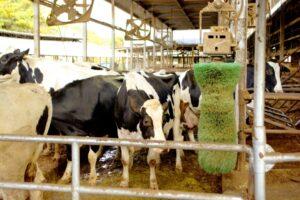 農学部の実習は多いのか