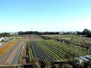 東京農工大学府中農場